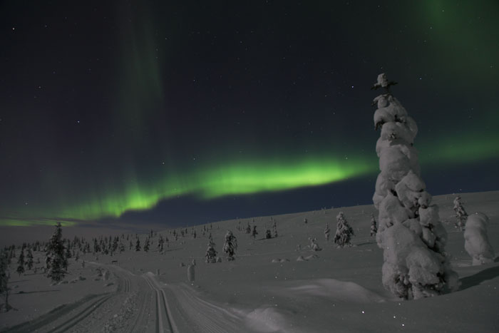 Aurora chasing by snowshoes
