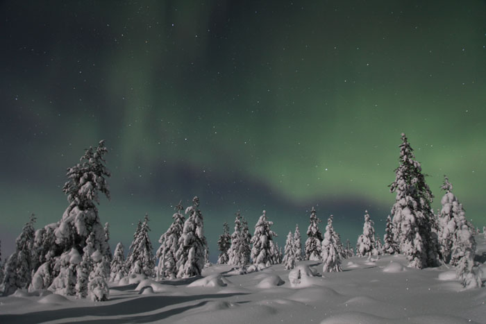 Aurora chasing by snowmobiles