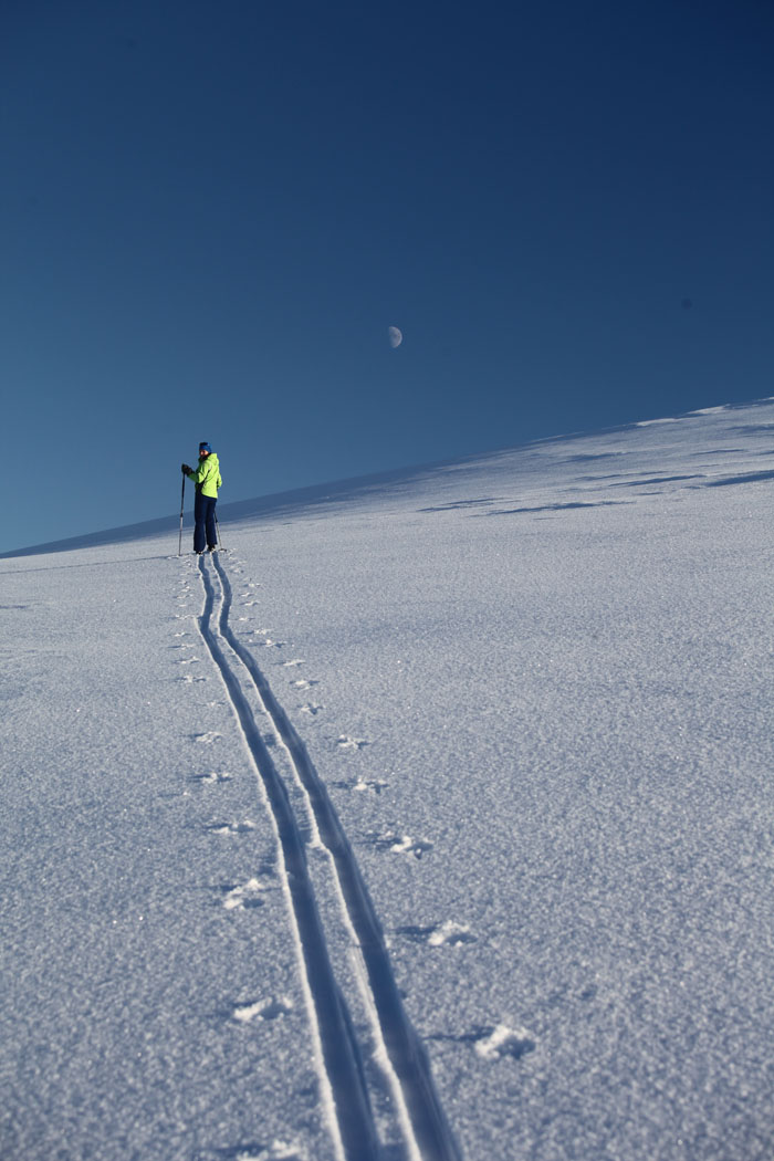 Backcountry skiing trip for beginners