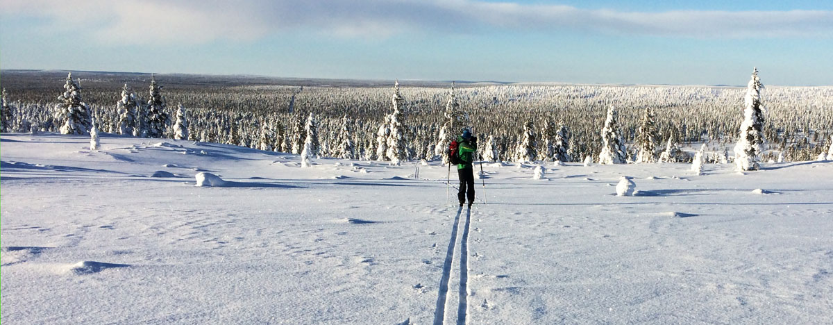 Off-trail skiing in Urho Kekkonen National park