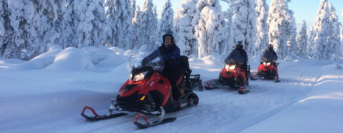 2h snowmobile safari to the fells